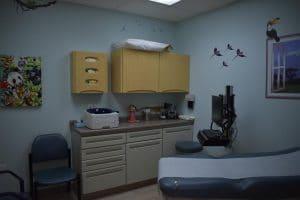 Moose & Squirrel Medical Clinic Jungle Room